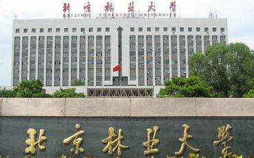 北京林业大学在职研究生